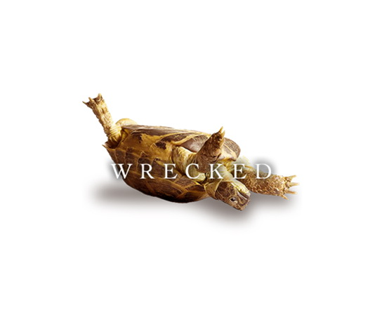 Post image for Wrecked by Jeff Goins – An ADDer's Book Review